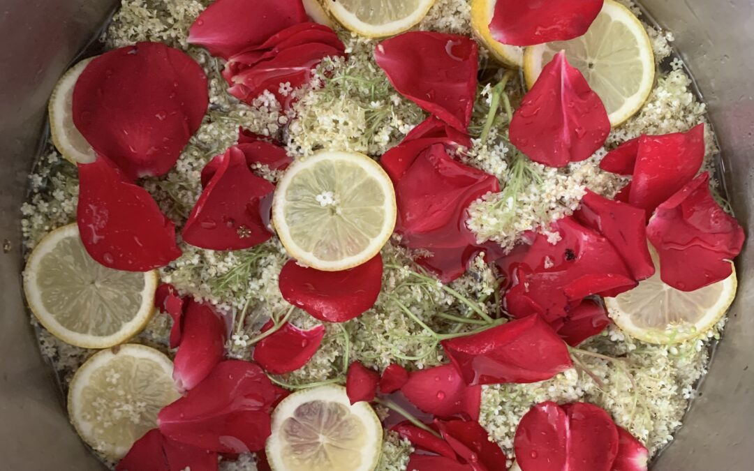 PINK ELDERFLOWER CORDIAL